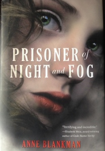 prisoner night fog book