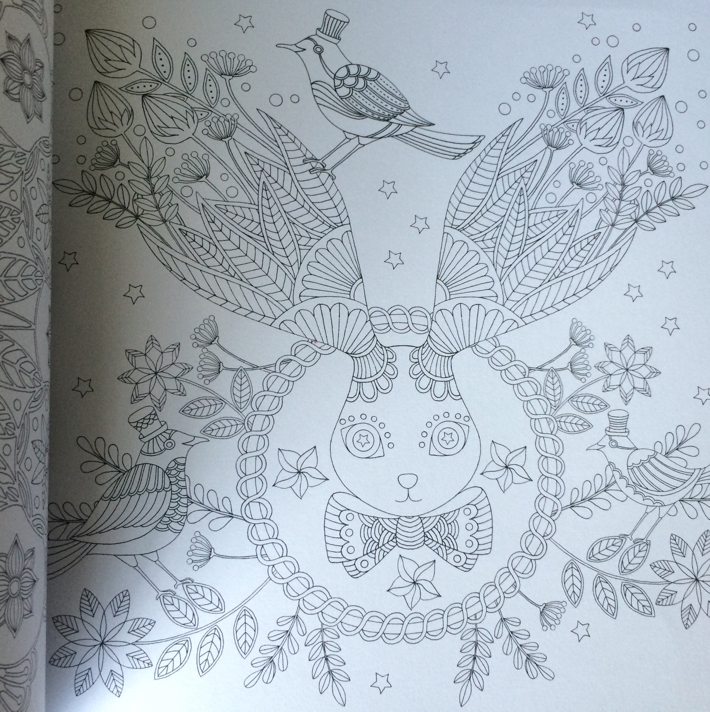 How much is the coloring book for adults - This Is Probably The Most Beautiful And Whimsical Coloring Book I Own And As You Have Seen From Previous Posts Link Or Add Photo Here I Own A Lot