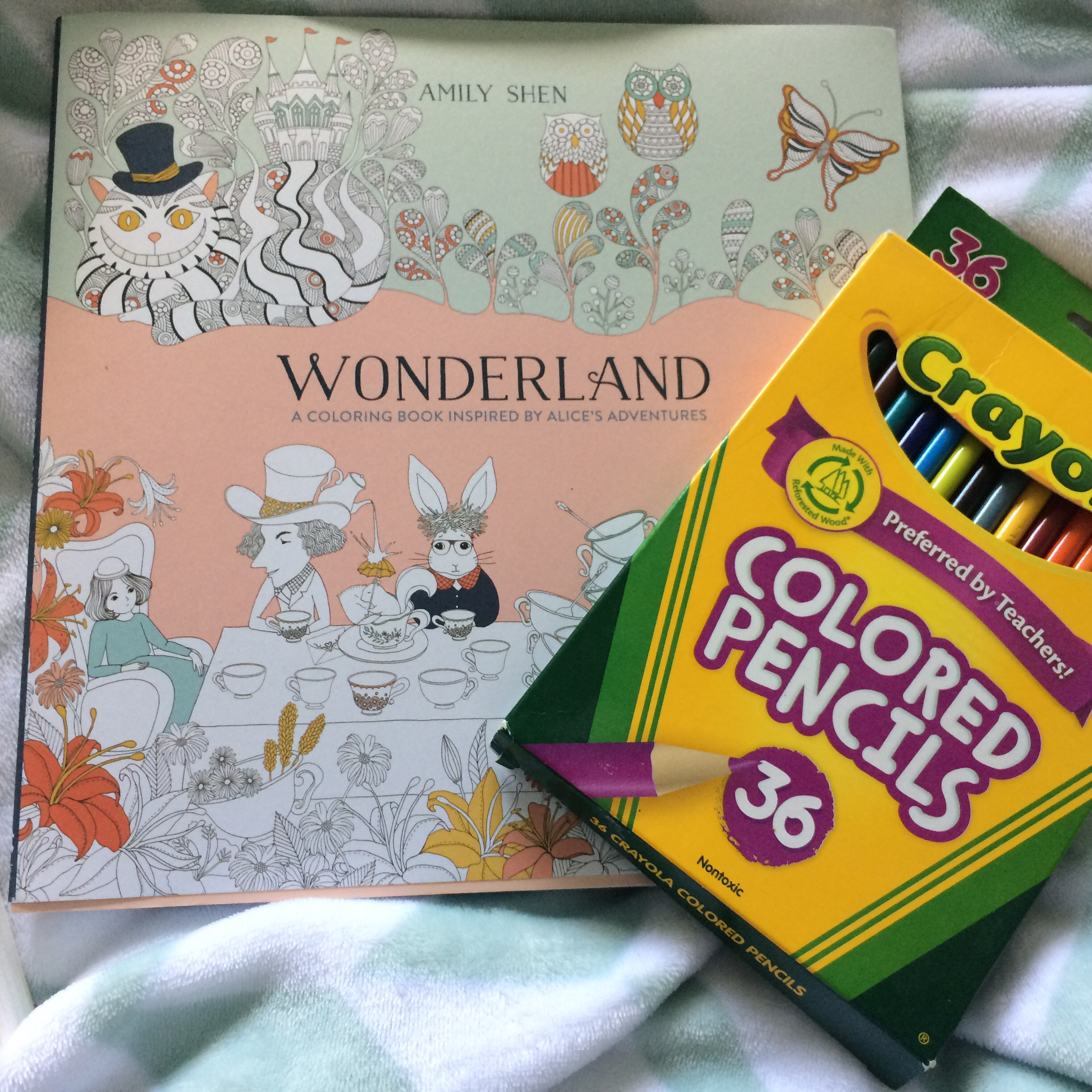 How much is the coloring book for adults - The Reason Why I Love This Book So Much Is More Than Just The Beautiful Illustrations It S The Way It Engages The Reader The Book Makes You The Main